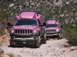 Pink Jeep- Red Rock National Conservation Area